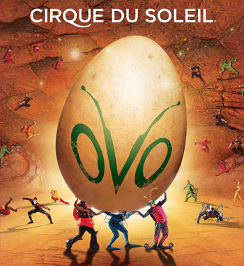 cirque de soleil essay Watch a video trailer for ovo by cirque du soleil original soundtrack, insect costumes & bug-themed acrobatics.
