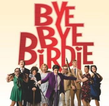 Bye Bye Birdie - Harvest Rain