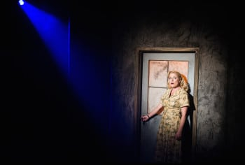 Helen Dallimore in Blood Brothers. Image by Kurt Sneddon.