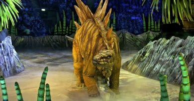 Stegosaurus in Walking With Dinosaurs: The Arena Spectacular