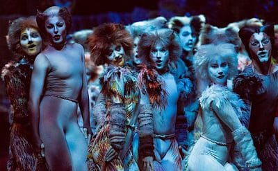 The cast of CATS the musical in Adelaide. Image by Image by Oliver Toth