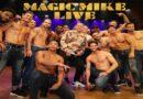 Magic Mike Live performances postponed due to lockdown